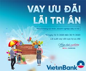 vietinbank-300x250-trang-con