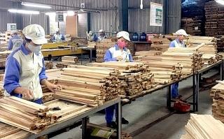 Xuất khẩu gỗ và lâm sản hướng tới mục tiêu 14 tỉ USD