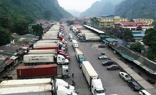 Tháo gỡ khó khăn hoạt động XNK, vận chuyển hàng hóa qua biên giới