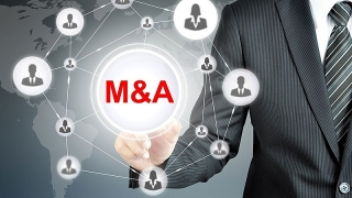 Định giá các thương vụ M&A tăng trưởng mạnh, bất chấp các tác động của đại dịch COVID-19