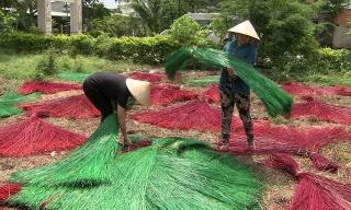 Tín dụng chính sách: Góp phần nâng cao vị thế phụ nữ Việt Nam