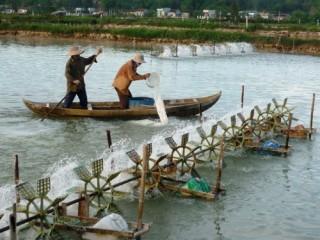 WB sẽ tiếp tục hỗ trợ dự án Nguồn lợi ven biển vì sự phát triển bền vững