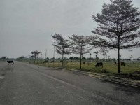 Thủ tướng yêu cầu kiểm tra dự án đô thị bị bỏ hoang tại Mê Linh
