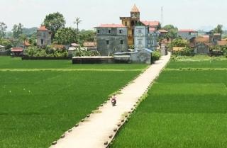 """Xây dựng nông thôn mới: Thực hiện nhiệm vụ """"kép"""""""