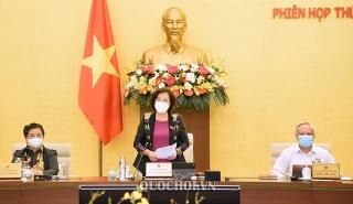UBTVQH đánh giá cao tinh thần khẩn trương của Chính phủ trong chỉ đạo triển khai gói an sinh xã hội