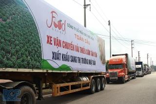 Bắc Giang xuất khẩu lô vải thiều đầu tiên sang thị trường Nhật Bản