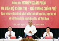 Thủ tướng: Đầu ra cho sản phẩm của hợp tác xã còn nhiều bất cập