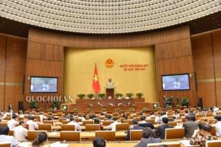 Hôm nay, Quốc hội thông qua Chương trình giám sát năm 2020