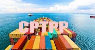 Bộ Công Thương làm cơ quan đầu mối triển khai Hiệp định CPTPP