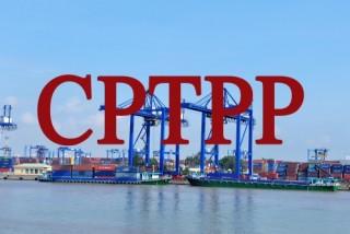 Ban hành Biểu thuế xuất nhập khẩu thực hiện Hiệp định CPTPP