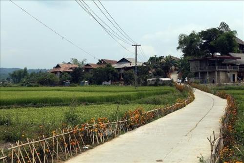 Tổng kết Chương trình xây dựng nông thôn mới khu vực miền núi phía Bắc