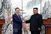 Việt Nam hoan nghênh kết quả Hội đàm Thượng đỉnh liên Triều ngày 19/9