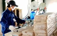 Doanh nghiệp nhỏ, vừa và siêu nhỏ chiếm tới 98,1%