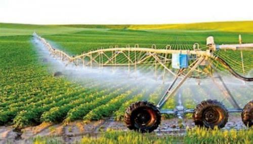 Phải coi doanh nghiệp là động lực chính cho phát triển nông nghiệp