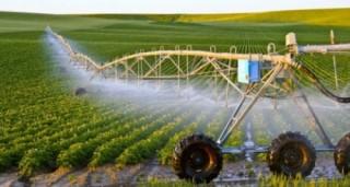 Tái cơ cấu nông nghiệp, vai trò của doanh nghiệp là rất quan trọng