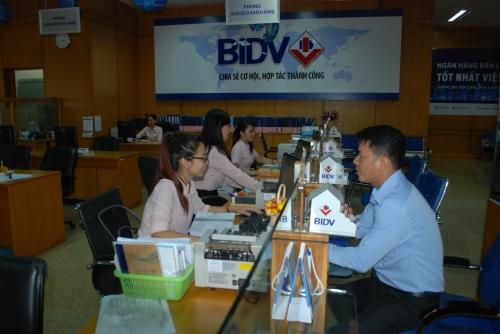 Kiên Giang: Đã giải ngân hơn 2.000 tỷ đồng qua kết nối ngân hàng - doanh nghiệp