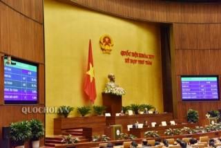 Hôm nay Quốc hội bầu Chủ nhiệm Ủy ban Pháp luật