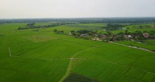 Quy hoạch Đồng bằng Sông Cửu Long lấy tài nguyên nước làm nền tảng