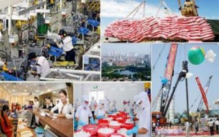 Thúc đẩy phát triển sản xuất kinh doanh, đáp ứng nhu cầu thị trường cuối năm