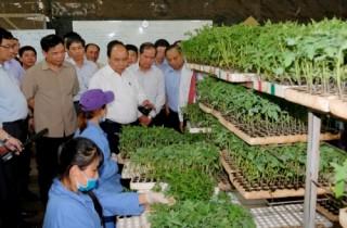 """Thủ tướng đối thoại với nông dân về """"liên kết 6 nhà, kiến tạo chuỗi giá trị nông sản"""