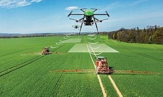 Phấn đấu năm 2020 tốc độ tăng trưởng GDP khu vực nông nghiệp đạt 3%