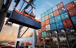 Hàng Việt ứng phó với nguy cơ mất thị phần khi phí logistics tăng