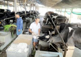 TP.HCM: Điều chỉnh 3 tiêu chí về nông thôn mới