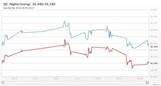 Giá vàng ngày 20/1/2017: Phục hồi trở lại khi USD suy yếu
