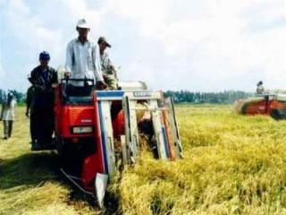 Hỗ trợ các TCTD cho vay phát triển nông nghiệp – nông thôn