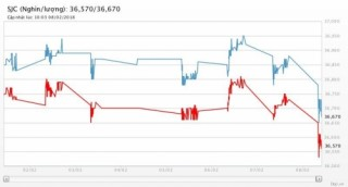 Giá vàng 8/2/2018: Thế giới giảm mạnh, vàng SJC mất gần 200.000 đồng/lượng