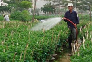 Đà Nẵng: Về đích nông thôn mới trong năm 2015