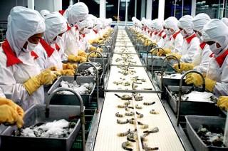 Giảm lãi suất cho vay tại Quỹ đầu tư phát triển thành phố Đà Nẵng