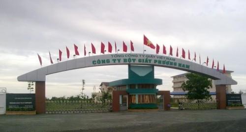 Xử lý nợ vay của Dự án Nhà máy bột giấy Phương Nam