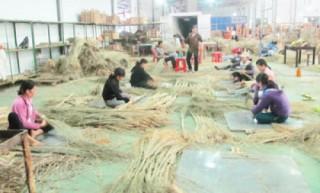 Hà Nội: Xây dựng kế hoạch phát triển kinh tế tập thể
