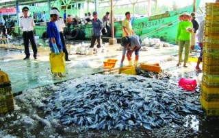 Hợp tác với Nhật Bản xây dựng Trung tâm nghề cá