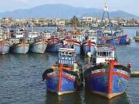 Đẩy mạnh việc triển khai bảo hiểm cho tàu khai thác hải sản
