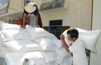 Xuất cấp hỗ trợ Nghệ An 1.566 tấn gạo
