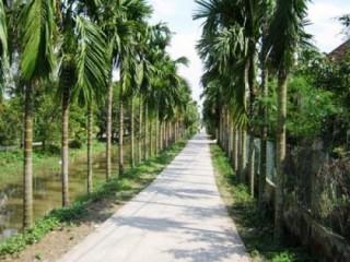Huyện Hải Hậu được công nhận đạt chuẩn nông thôn mới năm 2015