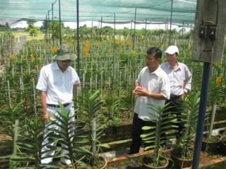 TP.HCM thành lập Văn phòng Điều phối Chương trình xây dựng nông thôn mới