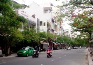 Chỉnh trang cây xanh tại 9 tuyến đường trên địa bàn Đà Nẵng
