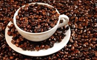Giá cà phê trong nước tăng 700 nghìn đồng/tấn