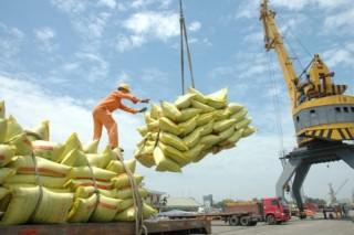 8 tháng xuất khẩu 3,3 triệu tấn gạo, trị giá FOB 1,43 tỷ USD