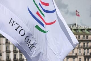 """WTO bị sốc với cách diễn giải về tranh chấp thương mại """"kiểu Mỹ"""""""