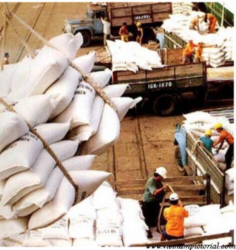 10 tháng, xuất khẩu nông lâm thủy sản đạt 24,6 tỷ USD