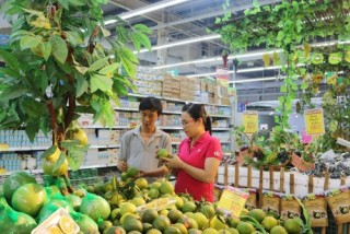 Hệ thống siêu thị Big C chủ động bình ổn giá rau củ