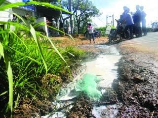 Khi nông dân đổ sữa giữa đường