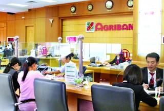 Agribank Lào Cai: Khẳng định vị thế kênh dẫn vốn chủ lực