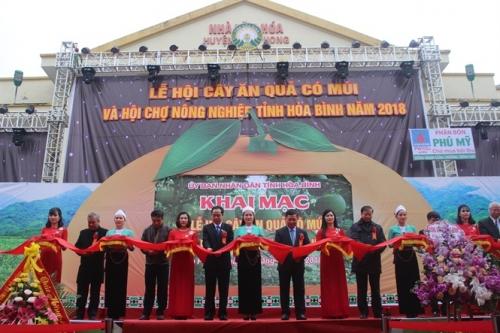 Hòa Bình phát triển nền nông nghiệp hàng hóa đa dạng