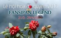 """Check-in """"vương quốc đỗ quyên"""" tại Fansipan Legend"""