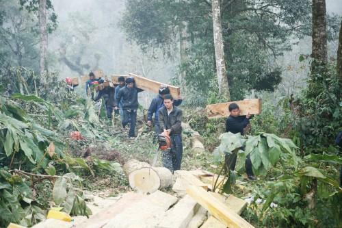 Khắc họa cuộc chiến đấu khốc liệt bảo vệ rừng